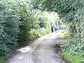 Backroad near Trim, Co. Meath - geograph.org.uk - 987453.jpg