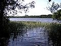 Bantry Lough - geograph.org.uk - 244008.jpg