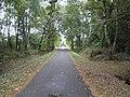 Barnbruch 11.10.2009 - panoramio (5).jpg