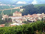 Vineyards around the town of Barolo