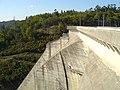 Barragem da Aguieira - Portugal (121823805).jpg