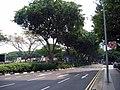 Beach Rd (Singapore) looking N from Rochor 2004.jpg