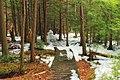 Beaver Dam Trail (2) (13229044775).jpg