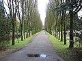 Begraafplaats Ermelo (31024611551).jpg