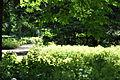 Begraafplaats Soestbergen 05.JPG