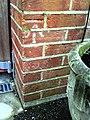 Benchmark on ^97 Bridport Road - geograph.org.uk - 2225979.jpg
