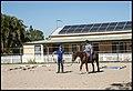 Benjamin Horse Riding lesson Bribie Road 1 (36172436081).jpg