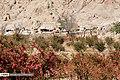 Berberis 13960722 10.jpg