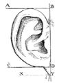 Bertillon - Identification anthropométrique (1893) 122 n&b.png