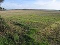 Big field - geograph.org.uk - 2116679.jpg