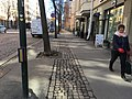 Bikeway with tree grates. Box on pole is audible pedestrian signal. (41588252204).jpg