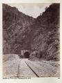 Bild från familjen von Hallwyls resa genom Mindre Asien och Turkiet 27 April - 20 Juni 1901 - Hallwylska museet - 103234.tif