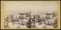 Bird's eye view of Paterson, from Crane's Hill, looking South-West, from Robert N. Dennis collection of stereoscopic views 2.png