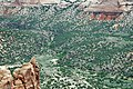 Black Canyon Schist (Paleoproterozoic, 1.759 Ga; Monument Canyon, Colorado National Monument, Colorado, USA) 3 (23899179632).jpg