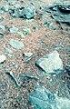 Black stones.jpg