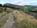 Blackstairs Mountain - geograph.org.uk - 1493074.jpg