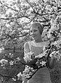 Bloeiende fruitboom in de Betuwe met Van der Polls stiefdochter Hans, Bestanddeelnr 189-1395.jpg