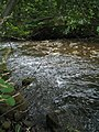 Bloomfield Provincial Park IMG 8200 (1848199461).jpg