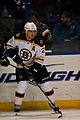 Blues vs. Bruins-9158 (6924995027).jpg