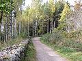 Bogstad Gamleveien ved Strömsbraaten rk 167237 IMG 1877.JPG