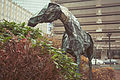 Boston Back Bay - Neiman Marcus Horse (17489110642).jpg
