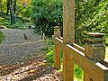 Botanička bašta Jevremovac, Beograd - Japanski vrt 11.jpg