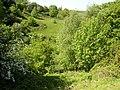 Bottomley Clough, Barkisland - geograph.org.uk - 180053.jpg