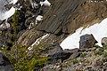 Boulders and Trees along Boulder Ridge, Mt Baker Snoqualmie National Forest (32108415965).jpg
