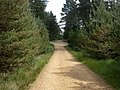 Boveridge Heath, road junction - geograph.org.uk - 1354389.jpg