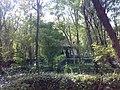 Bower 2 - panoramio.jpg