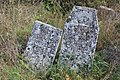 Briceni Jewish Cemetery 64.JPG