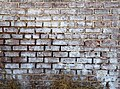 Brickwork on farmhouse at Kelvin A. Lewis farm in Creeds.jpg