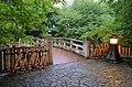 Bridge (658540033).jpg