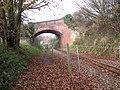 Bridge over the Bure Valley Railway - geograph.org.uk - 1059323.jpg