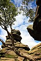 Brimham Rocks from Flickr J 15.jpg