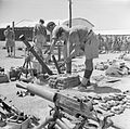 British Forces in the Middle East, 1945-1947 E32050.jpg