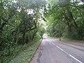 Brumby Wood Lane - geograph.org.uk - 2003735.jpg