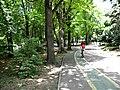 Bucharest, Romania. Herăstrău. A girl on the bicycle.jpg