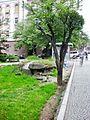 Bulevardi Dëshmorët e Kombit. Búnquer.jpg