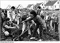 Bundesarchiv Bild 183-1986-1025-029, Plate, Teilnehmer eines internationalen Jugendtreffens.jpg