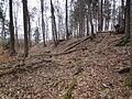 Burg Rambach2.JPG