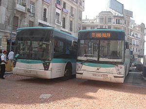 Bus de la ligne 19 m'dina bus.jpg