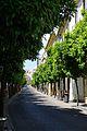 Córdoba Spain.6 (18564533181).jpg