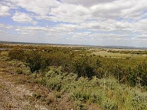 CC-Llanosde Cáceres-5.JPG