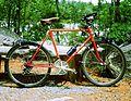 CCM mountain bike.JPG