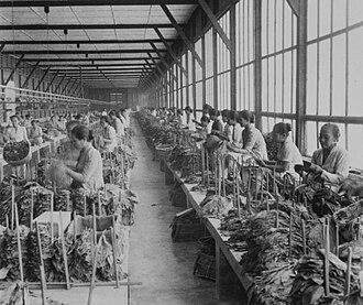 Smoking in Indonesia - Tobacco factory in Sumatra