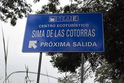 Camino2.jpg