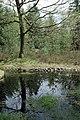 Camp celtique de la Bure - Bassin des Dianes 7.jpg