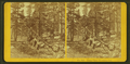 Camp view, Yosemite, Cal, by Kilburn Brothers.png