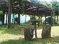 Camping São Pedro, Diamantina MG Brasil - Latada de maracujás doces - panoramio.jpg